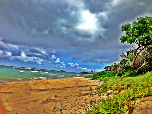It was overcast, but the beach was beautiful in La'ie on the north shore of O'ahu.